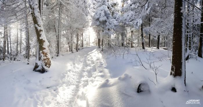 Versant_Plein-air_Sutton-hiver_LR_02