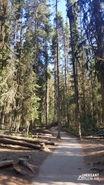 Versant_plein-air_JohnstonCayon-Banff_LR_03