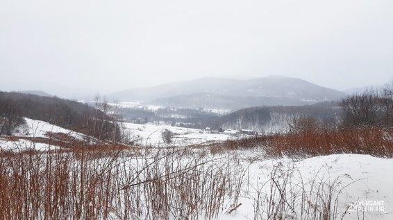 Versant_Plein-Air_Mont-Gale_hiver_LR_06