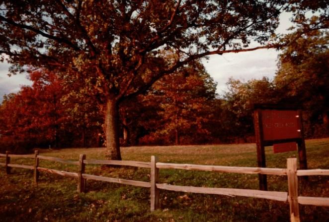 Tinley Creek 3__Konica Color