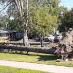 Derecho EF1 Tornado in Oak Forest, Illinois Photo #1