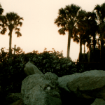 Featured Photo: Sunset, Boulders, Shells on a Beachfront Property – Paradise Beach & Park – Melbourn...