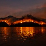 Western Wildfires: Latest Maps and Information