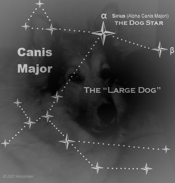 Lady & Canis Major _ Blend two Images__imageedit_3_9950950111.jpg
