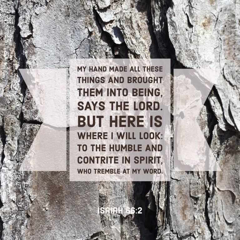 Verse Image for Isaiah 66-2 - 1x1.jpg