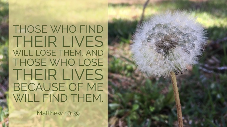 Verse Video for Matthew 10:39 - 16x9
