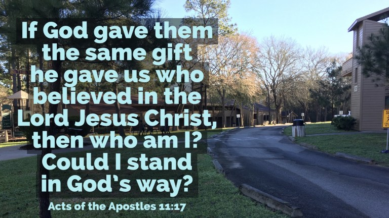 Verse Image for Acts of the Apostles 11:17 - 16x9