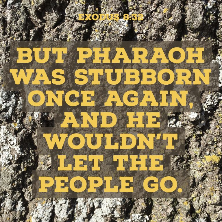 Verse Image for Exodus 8:32 - 1x1