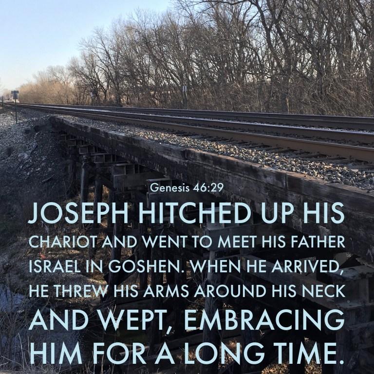 Verse Image for Genesis 46:29 - 1x1