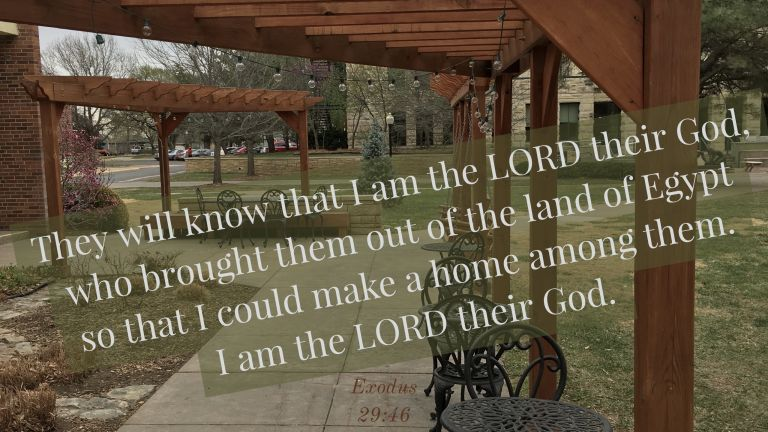 Verse Image for Exodus 29:46 - 16x9