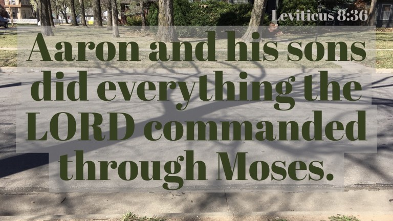 Verse Image for Leviticus 8:36 - 16x9