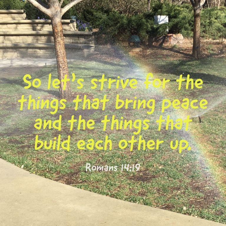Verse Image for Romans 14:19 - 1x1