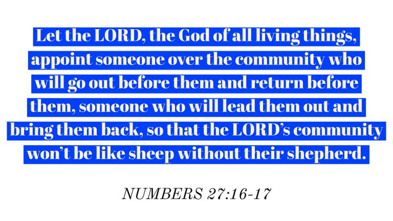 Verse Image for Numbers 27:16-17 - 16x9