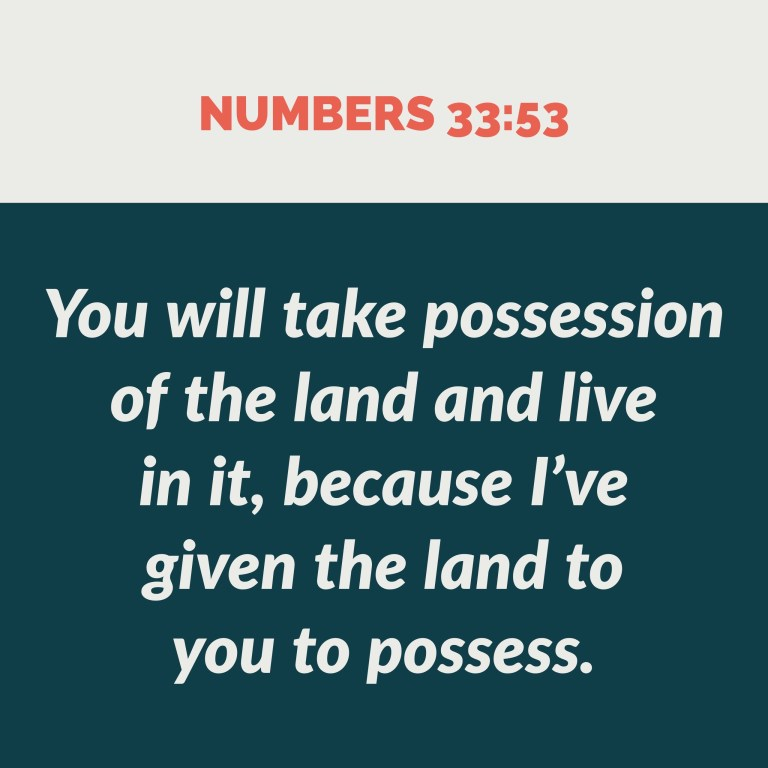 Verse Image for Numbers 33:53 - 1x1