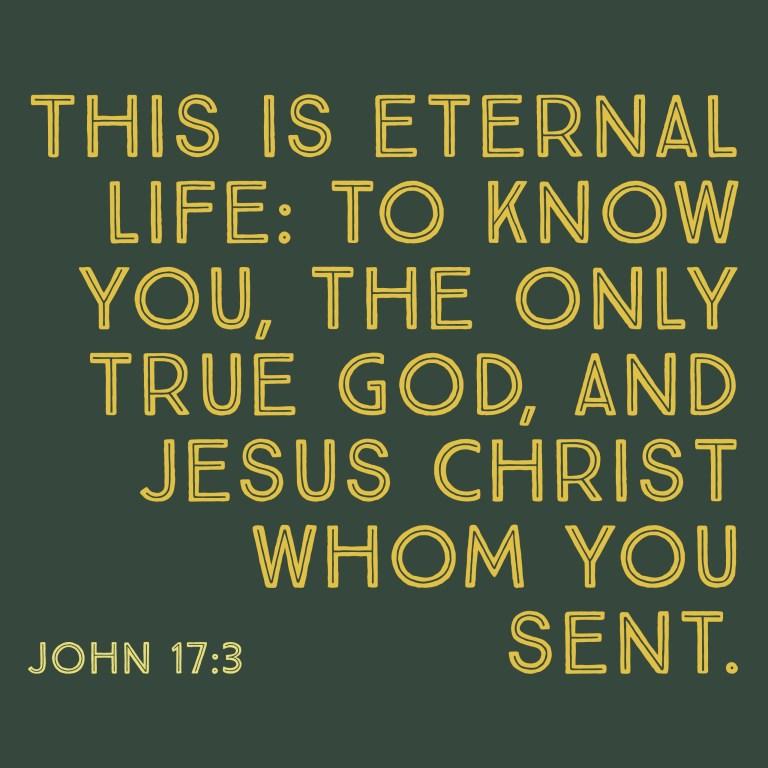 Verse Image for John 17:3 - 1x1