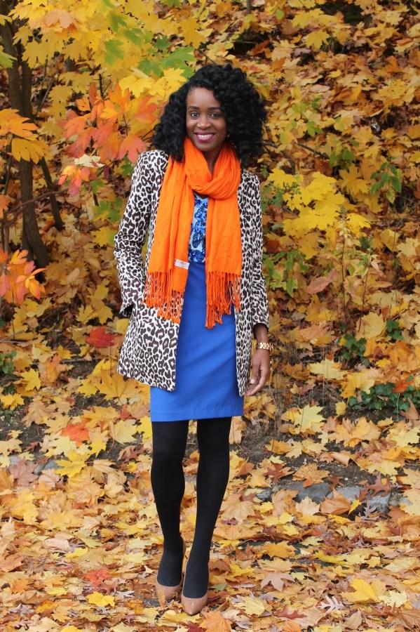 Leopard coat & blue midi dress (2)
