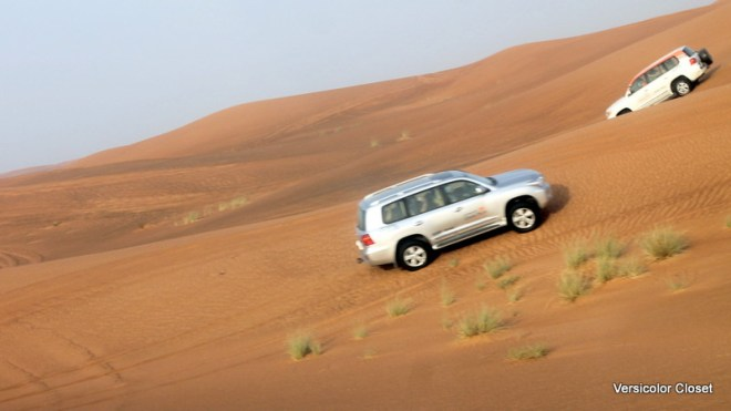 Dune bashing - Dubai (1)