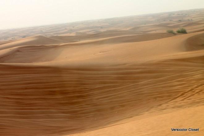 Dune bashing - Dubai (3)