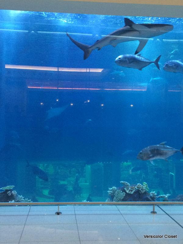 Joe's crab shack brunch - Dubai mall (2)