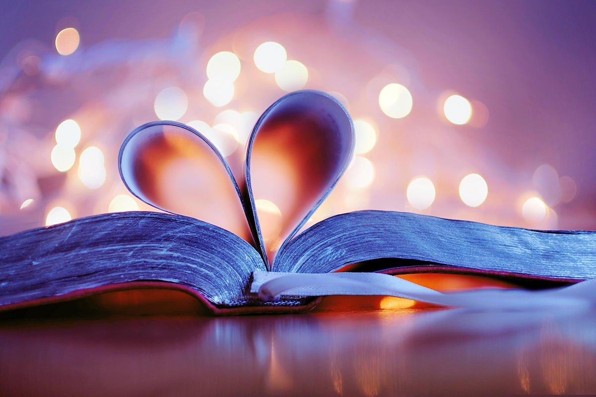08/09/2020· y nosotros hemos llegado a saber y creer que dios nos ama. 150 Versiculos De Amor En La Biblia Citas Biblicas Sobre El Amor Versiculos