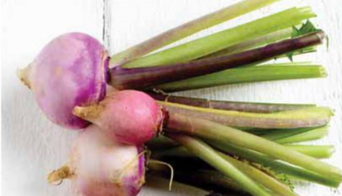 Nutrition from Turnip