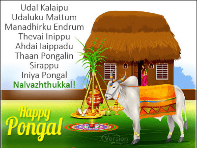 Happy Pongal in tamil Images