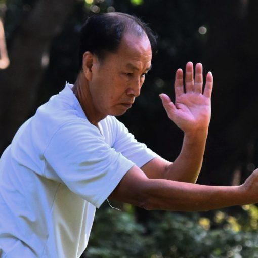 Chi Gong gymnastique chinoise pour faire circuler son énergie