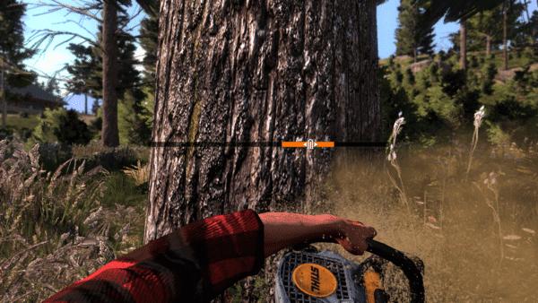 LumberjacksDynasty-