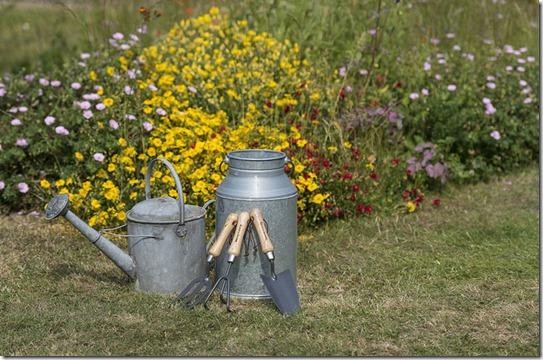 Petits outils de jardin-2