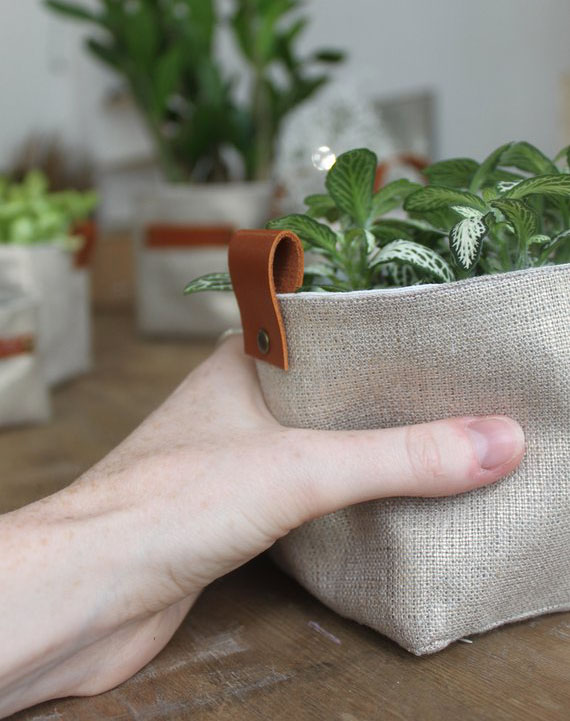 cache pot lin