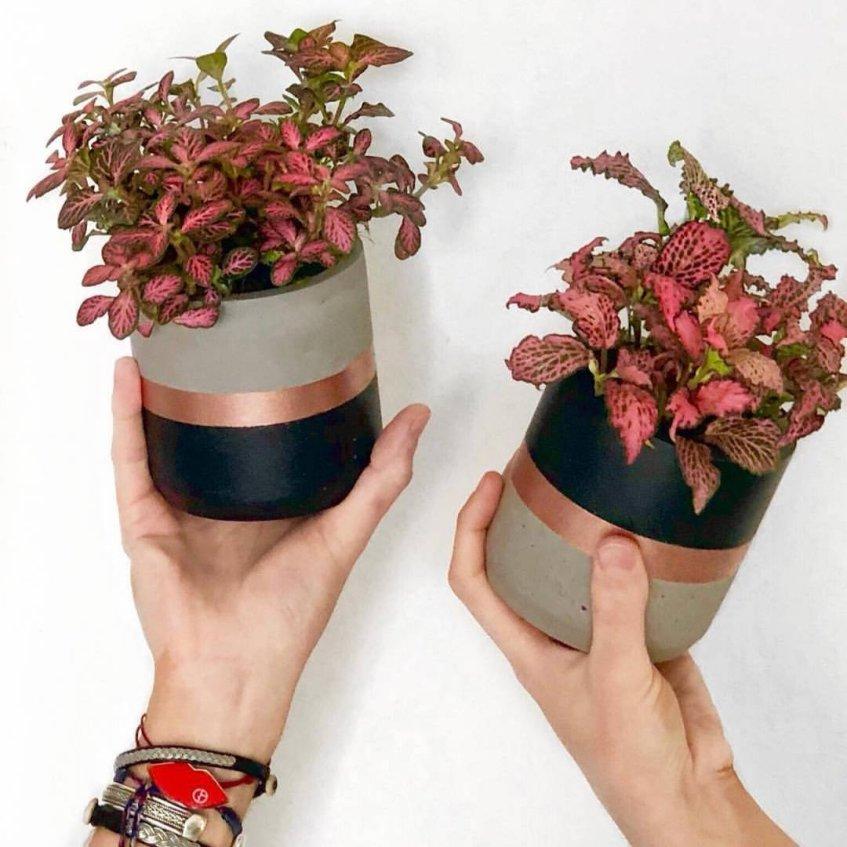 tricolore cache pot