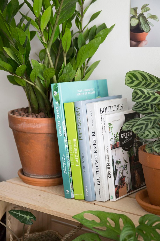 livre plante selection