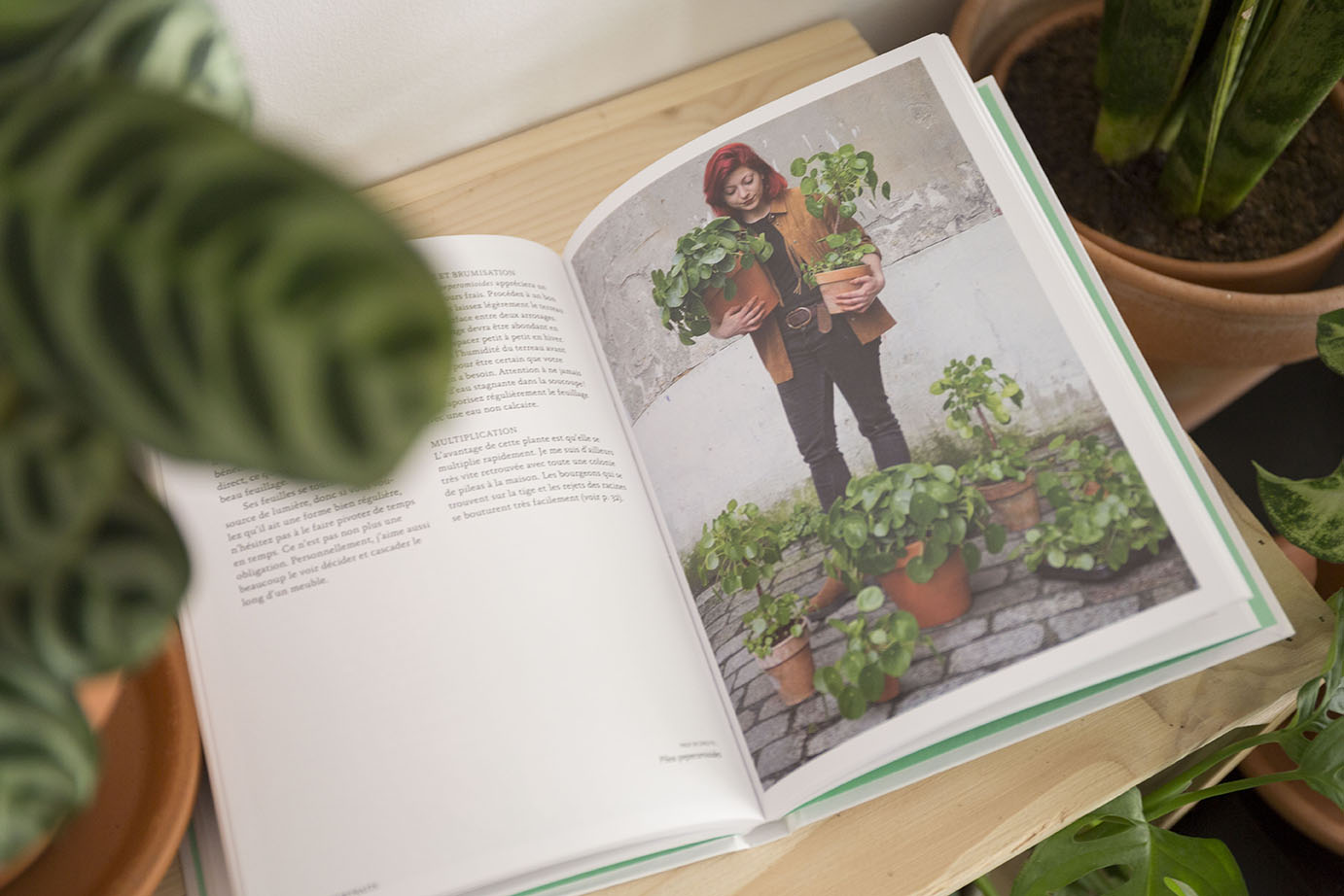 livres plantes selection green