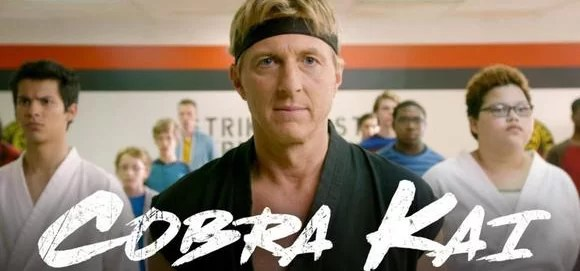 Ver online Cobra Kai Karate Kid en HD