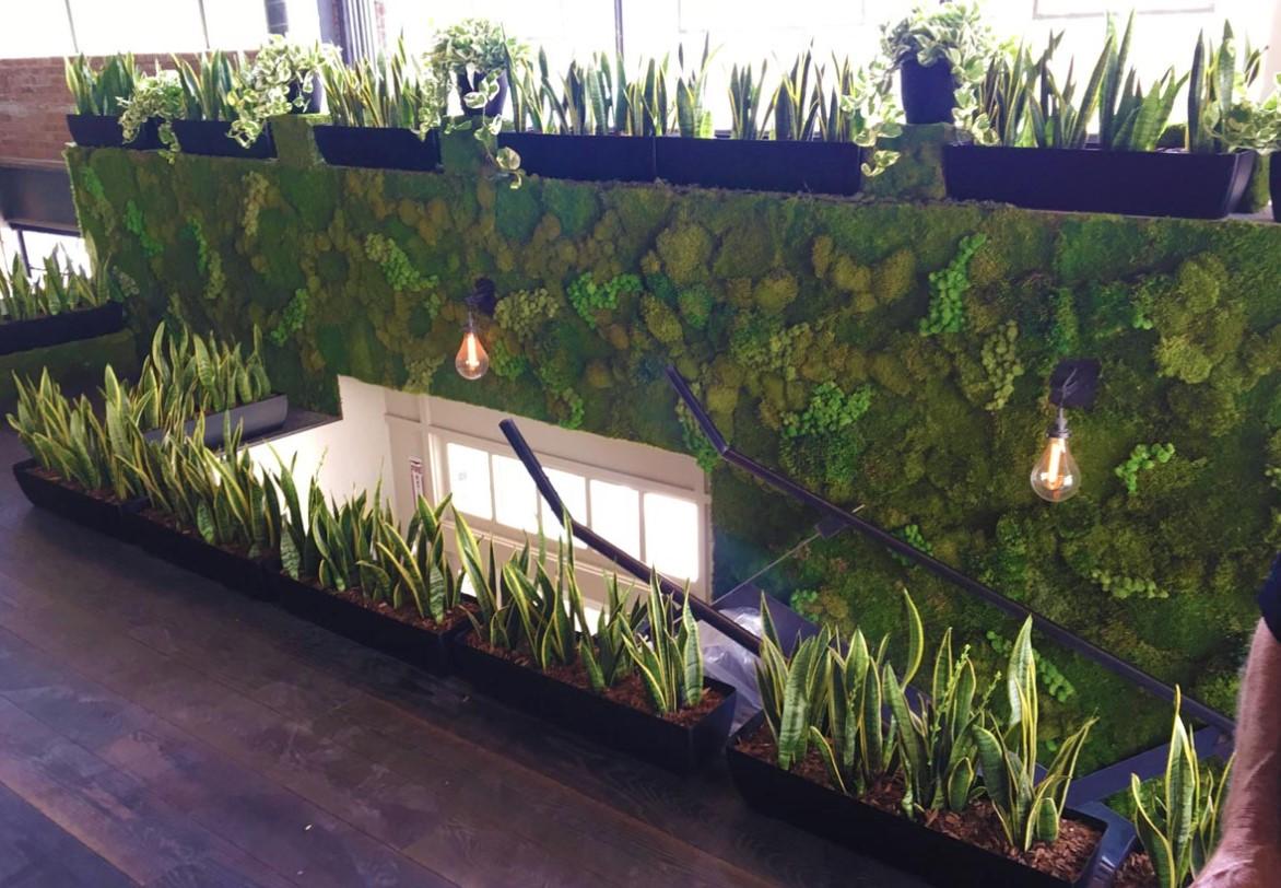 Living Walls TrueVert Vertical Garden Solutions San Diego