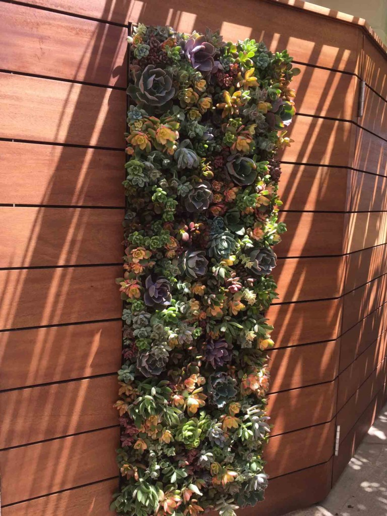 Green Wall Design Living Walls TrueVert Vertical