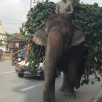 Expedition Prep – Kathmandu
