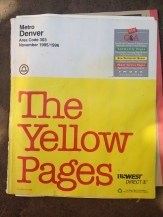 Part of the Yellow Pages fro 1995. TRASH.