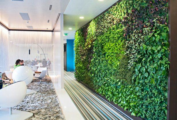 Lebendige Wand von Vertical Magig Garden bei Microsoft in Wien