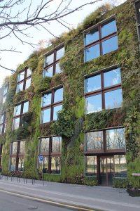 Von Patrick Blanc angelegter Wandgarten in Paris