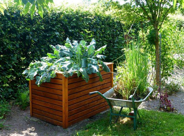 kreative Gartenbeete mit verschiedenen Gartenpflanzen