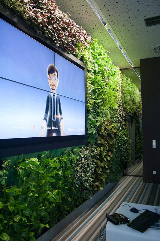 Gründe Wand von Vertical Garden Magic bei Microsoft in Wien