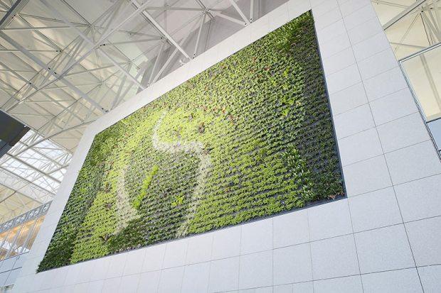 Grüne Wand am Frankfurter Flughafen