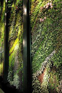 Detail des vertikalen Gartens von Patrick Blanc im Dussmann-Haus Berlin, seitliche Ansicht der Stahlkonstruktion mit einer Vielzahl an ästhetisch angeordneten Grün- und Blühpflanzen