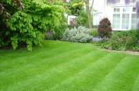 Top Dressing a Lawn: How & Why | Love The Garden