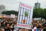 hennep legaliseren