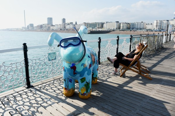 Not being shy taking photographs at a Snowdogs by the Sea event. The Martlet's Snowdogs by the Sea campaign on Brighton's Palace Pier this evening The dogs will go on show in September as part of the art trail raising money for the local Martlet's Hospice Please Credit - Simon Dack / Vervate