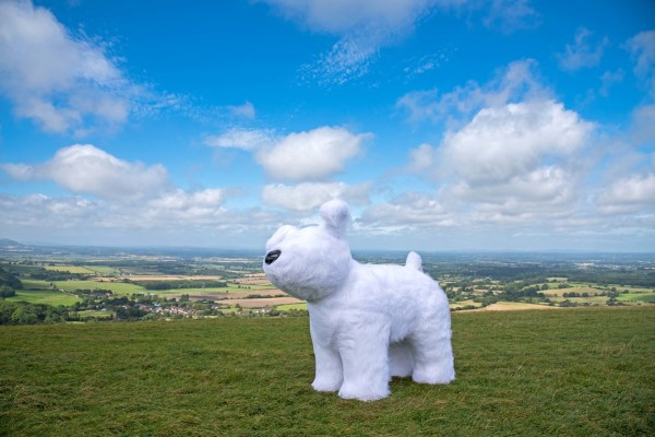 Photo by Liz Finlayson/Vervate The team from Vervate have sponsored Roodle one of the Martlets Snowdogs, who will be be housed inside Brighton Dome for the duration of the Snowdogs by the Sea art trail. Roodle is pictured here out for a walk on Devils Dyke