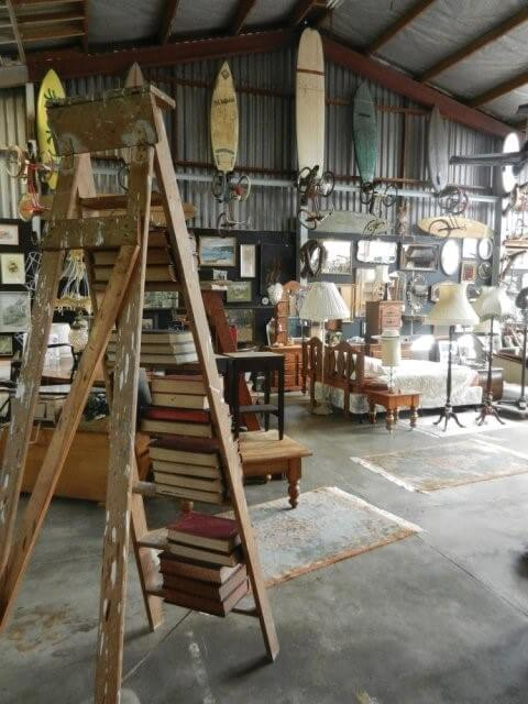 Uncovering Treasures at Junk & Disorderly