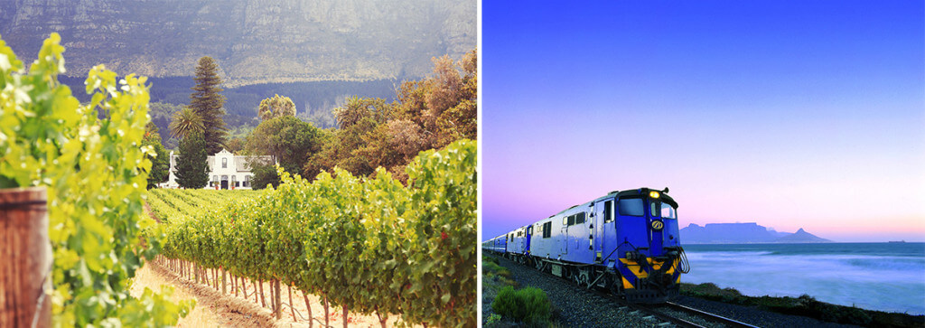 Stellenbosch and The Blue Train